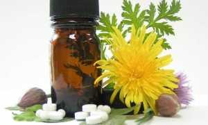 Киста почки: причины и лечение народными средствами и медикаментами