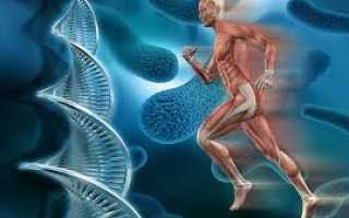 Генетический анализ крови – как сдать, что показывает исследование