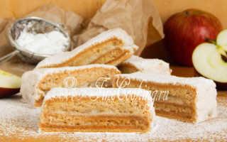 Пастила из яблок в домашних условиях – старинные рецепты приготовления в духовке и мультиварке с фото