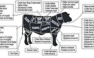 Мраморное мясо – что это такое и чем отличается от обычного: как приготовить стейк, названия частей туши, специальная технология обработки