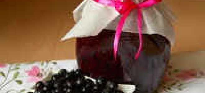 Черная смородина, протертая с сахаром на зиму – лучшие рецепты