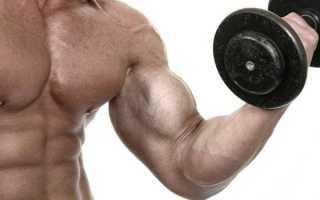 Что такое метаболизм, какие процессы в организме ему свойственны, симптомы нарушения метаболизма