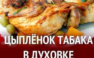 Цыпленок табака в духовке – вкусные рецепты приготовления в домашних условиях с фото и видео
