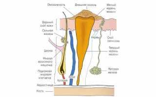 Как быстро удалить мозоли на ногах