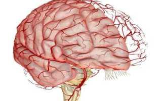 Средства для улучшения кровоснабжения сосудов головного мозга