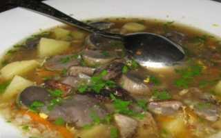 Суп с гречкой – рецепты приготовления диетического, молочного или на бульоне пошагово с фото