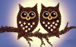 Поделки из кофейных зерен своими руками: пошаговые инструкции