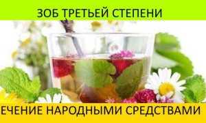 Лечение щитовидной железы у женщин народными средствами от зоба и узлов