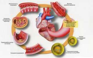 Холестерин лпнп – низкий и высокий уровень, коэффициент атерогенности