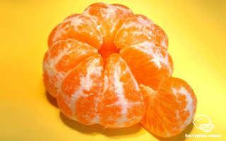 10 полезных свойств мандаринов для красоты и здоровья человека