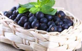 Какие напитки помогают снизить давление – лечебное действие трав, какао, фруктовых и ягодных фрешей