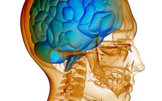 Внутричерепное давление у ребенка – симптомы, причины повышения и методы лечения