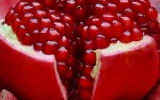 Гранат при сахарном диабете 2 типа: можно ли есть, польза и вред фрукта