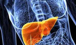Гепатоз печени: как лечить заболевание
