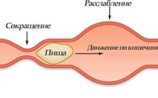 Как лечить нарушение двигательных функций кишечника, виды заболевания