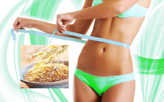 Овёс для похудения: способы и рецепты приготовления полезного отвара