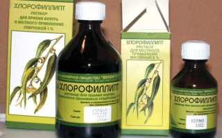 Хлорофиллипт для полоскания горла: как разводить и применять спиртовой раствор