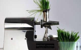 Шнековая соковыжималка – принцип работы, описание лучших моделей с характеристиками и ценами