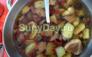 Суп с маслятами свежими или замороженными – вкусные рецепты приготовления грибных первых блюд с фото