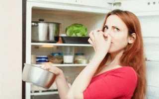Как избавиться от запаха в холодильнике при появлении