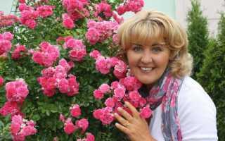 Флорист – кто это и должностные обязанности, размер заработка и как стать цветочным дизайнером
