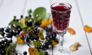 Настойка из черноплодной рябины – полезные свойства и как готовить с листьями вишни, лимоном или гвоздикой