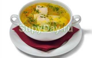 Суп с грибами и курицей – как вкусно приготовить в кастрюле или мультиварке