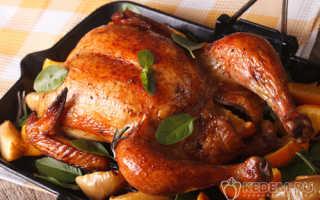 Как правильно приготовить курицу в духовке – запекание куриного мяса в рукаве до хрустящей корочки