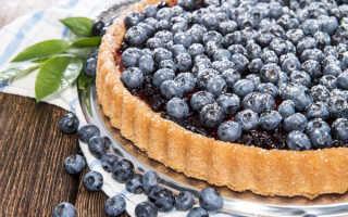 Пирог с черникой – как пошагово приготовить по рецептам с фото и испечь в духовке или мультиварке