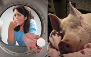 Запах из стиральной машинки – как убрать вонь из барабана: места размножения и причины появления бактерий в стиралке