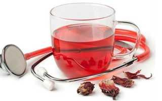 Польза и вред чая каркаде для мужчин и женщин