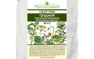 7 лекарственных трав от кашля и бронхита – обзор лучших сборов для детей и взрослых