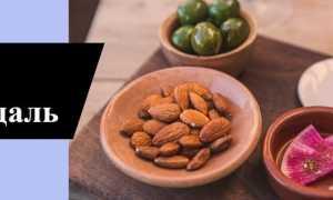 Миндаль – польза и вред для организма, состав и калорийность