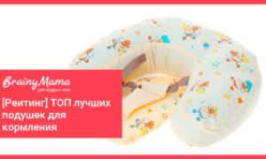 Подушки для кормления – где купить и как пользоваться, цены и отзывы мам