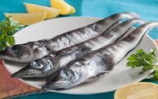 Ледяная рыба – как приготовить блюда в духовке или сковороде по рецептам с фото