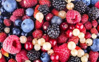 Настойка из ягод свежих и замороженных – как сделать вишневую, клюквенную, смородиновую или малиновую