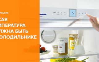 Какая температура должна быть в холодильнике – как выставить идеальные показатели для эффективной работы