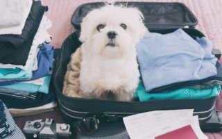 5 лайфхаков, как правильно упаковывать чемодан